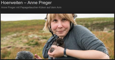 anne_preger_Google_Suche